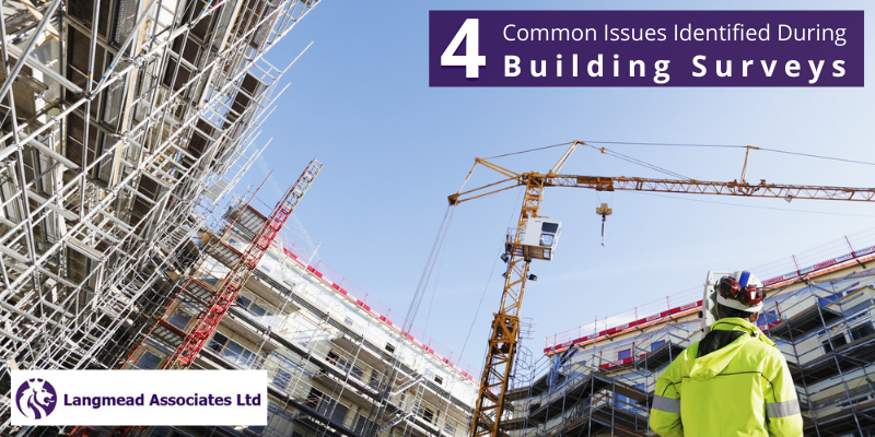 4 Common Issues Identified During Building Surveys